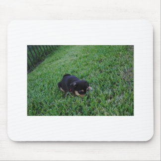Puppy Dog Mouse Pad