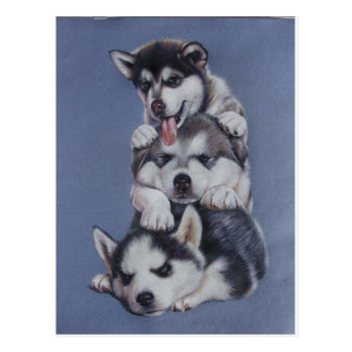 Puppy Dogs Postcard