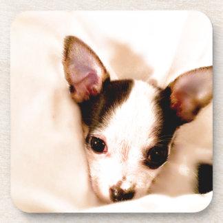 Puppy Drink Coaster