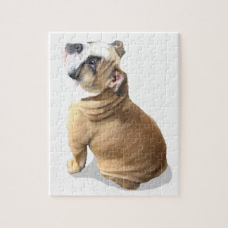 puppy english bulldog puppy puzzle