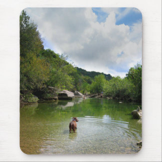 Puppy Exploring Barton Creek - Austin Texas Mouse Pad