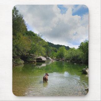 Puppy Exploring Barton Creek - Austin Texas Mouse Pad