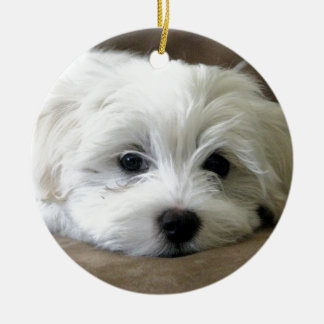 Puppy Eyes Ceramic Ornament