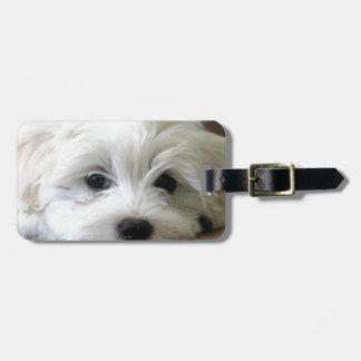 Puppy Eyes Luggage Tag