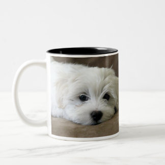 Puppy Eyes Maltese Custom Mug