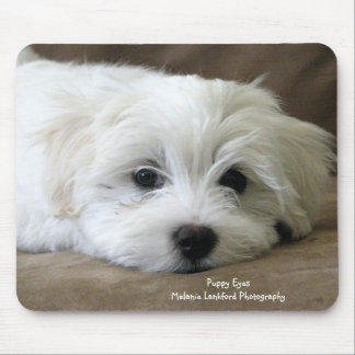 Puppy Eyes Mouse Pad