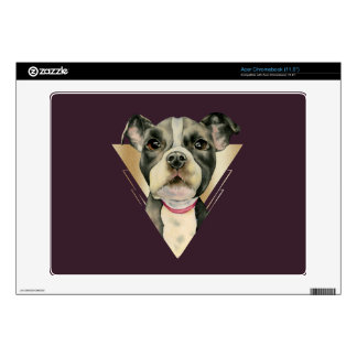 """""""Puppy Eyes"""" Pit Bull Dog Watercolor Painting 4 Acer Chromebook Decals"""