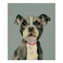 Puppy Eyes | Pit Bull Dog Watercolor Painting Poster