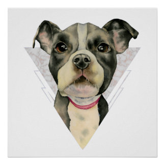 """""""Puppy Eyes"""" Pit Bull Watercolor Painting 2 Poster"""