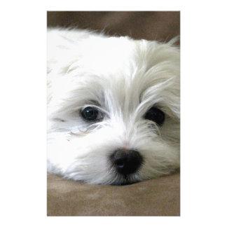 Puppy Eyes Stationery