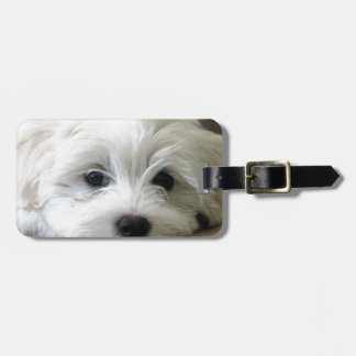 Puppy Eyes Travel Bag Tag