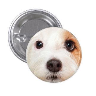 Puppy Face Button