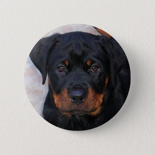 Puppy Face Pinback Button