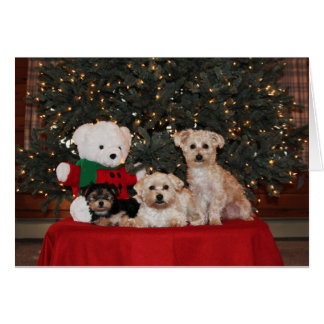 Puppy Family Greeting Card