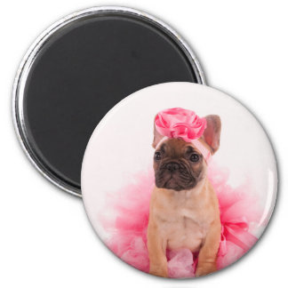 Puppy french bulldog disguised magnet
