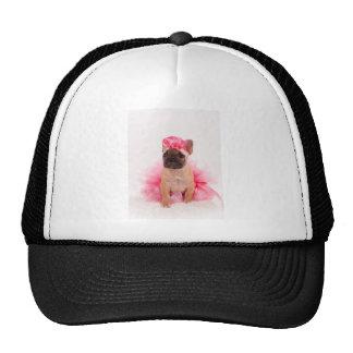 Puppy french bulldog disguised trucker hat