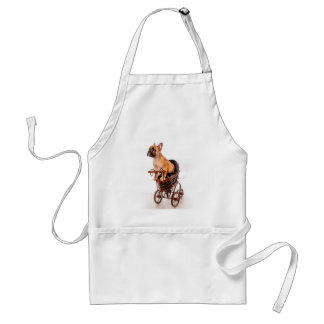 Puppy french bulldog in has pram adult apron