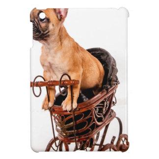 Puppy french bulldog in has pram case for the iPad mini