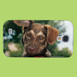 Puppy Galaxy S4 Covers
