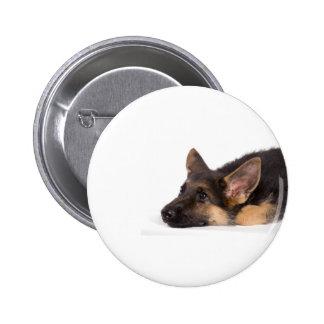 puppy german sheperd pin redondo de 2 pulgadas