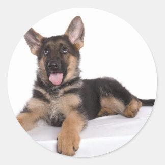 puppy German shepherd Pegatina Redonda