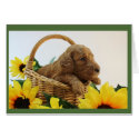 Puppy Greeting Card for All Occasions