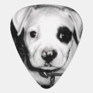 Puppy Guitar Picks Pick