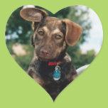 Puppy Heart Sticker