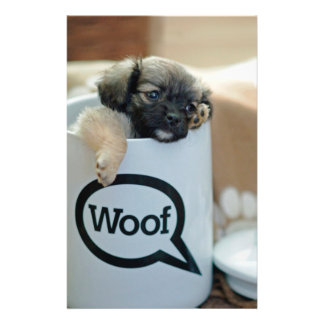 """Puppy in a Cup Woof Dog Brown Pet 5.5"""" X 8.5"""" Flyer"""
