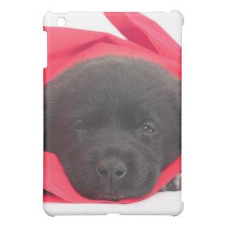 Puppy in blanket iPad mini cover