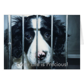 puppy in cage, Every Life is Precious! Card