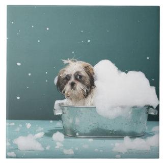 Puppy in foam bath ceramic tile