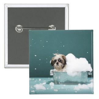 Puppy in foam bath pinback button