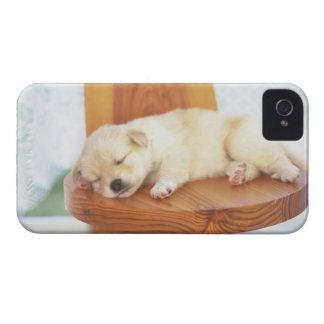Puppy iPhone 4 Case