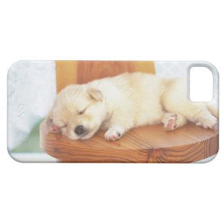 Puppy iPhone SE/5/5s Case