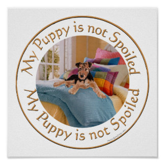 Puppy is Not Spoiled Poster