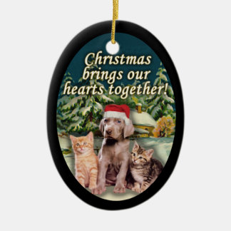 Puppy Kitten Snow Cabin Christmas Ornament