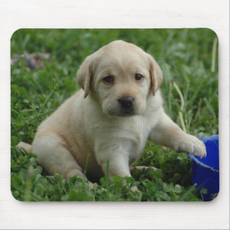 puppy-lab-HD-wallpaper Mouse Mats