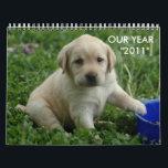 "puppy-lab-HD-wallpaper,  OUR YEAR    &quot;2011&quot; Calendar<br><div class=""desc"">calendar</div>"