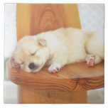 Puppy Large Square Tile
