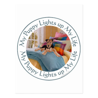 Puppy Lights Up MY Life Postcard