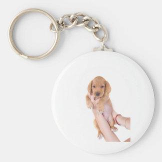 puppy llavero redondo tipo pin