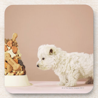 Puppy looking at pile of biscuits in dog bowl beverage coaster