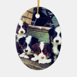 Puppy Love - Adorable  Australian Shepherds Ceramic Ornament