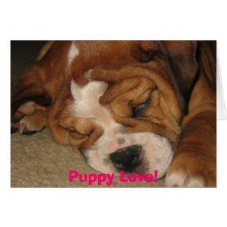 Puppy Love! Card