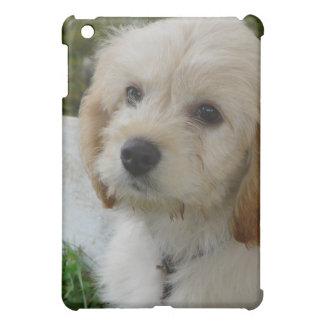 Puppy Love - Cute MaltiPoo Dog Photo Cover For The iPad Mini