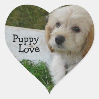 Puppy Love - Cute MaltiPoo Dog Photo Heart Sticker