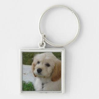Puppy Love - Cute MaltiPoo Dog Photo Silver-Colored Square Keychain