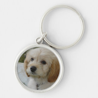 Puppy Love - Cute MaltiPoo Dog Photo Silver-Colored Round Keychain