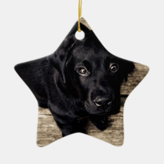 puppy love Double-Sided star ceramic christmas ornament